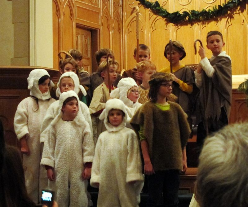 12.14.10_Shepherds_and_sheep
